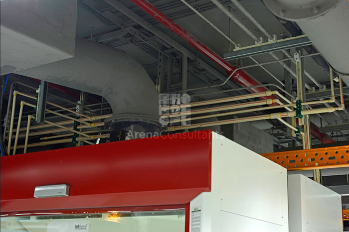 Fumehood ducting, utility piping layout and all services